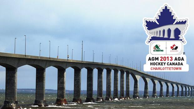2013 agm logo with bridge 640