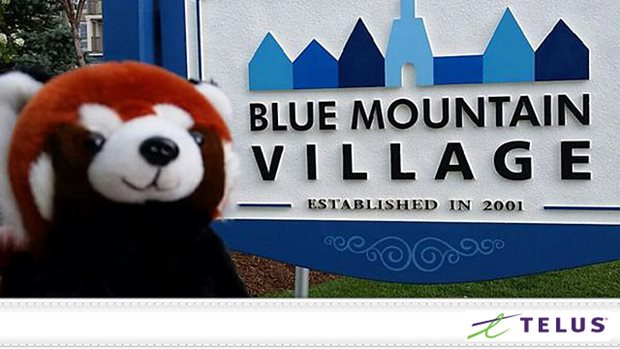 blog telus red panda blue mtn village 640