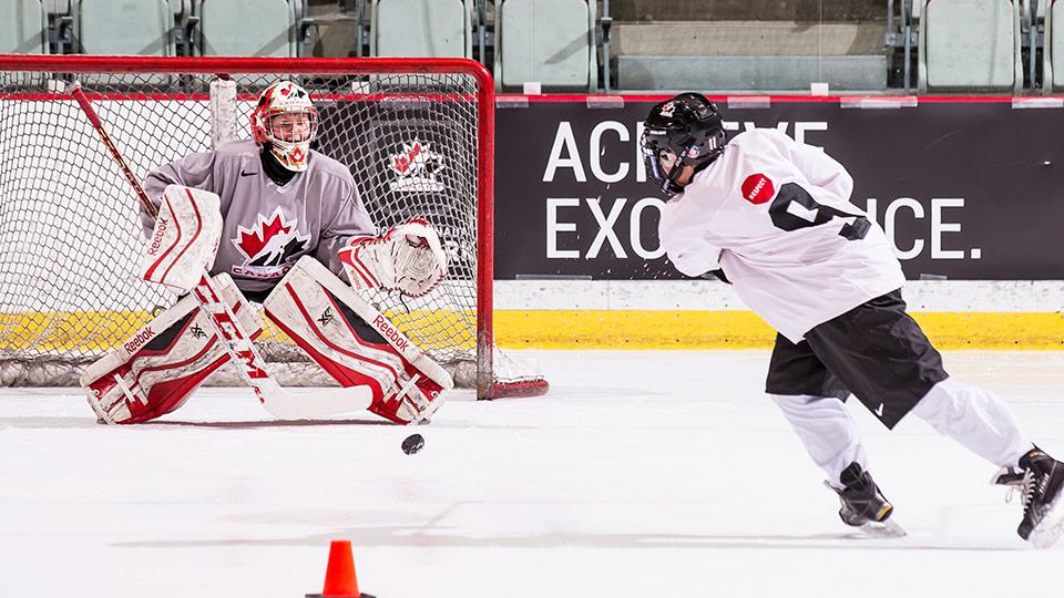 Shooting and scoring hockey goals