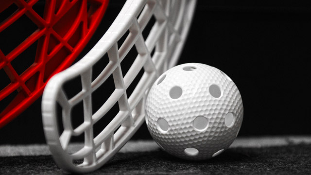 Image result for floorball