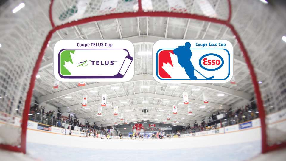 telus and esso annoucement