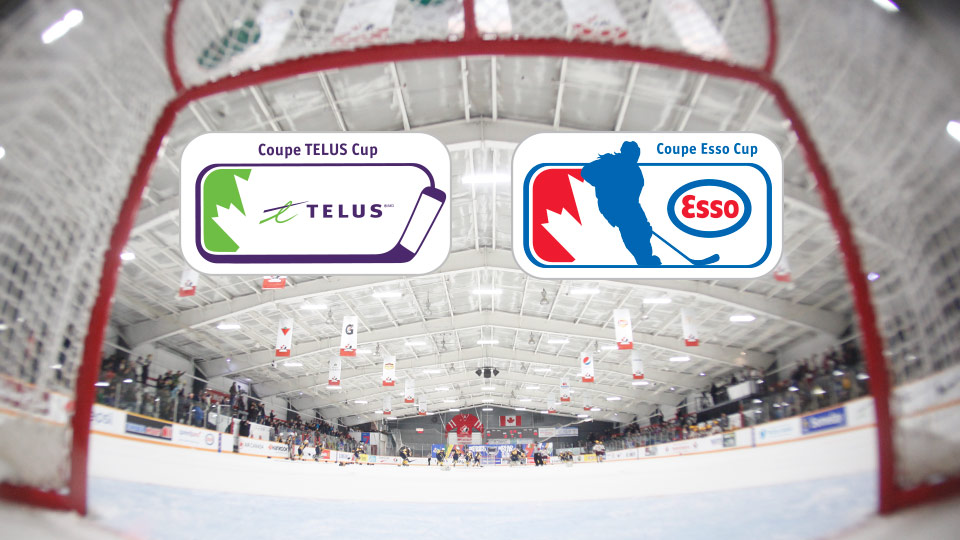 telus and esso annoucement?q=60