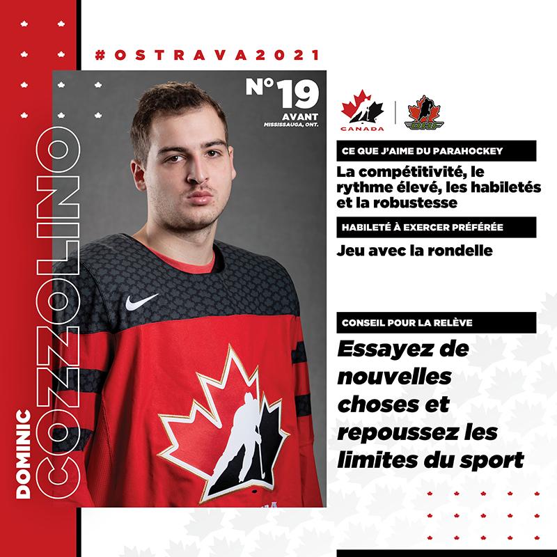 Profils de joueurs - Dominic Cozzolino