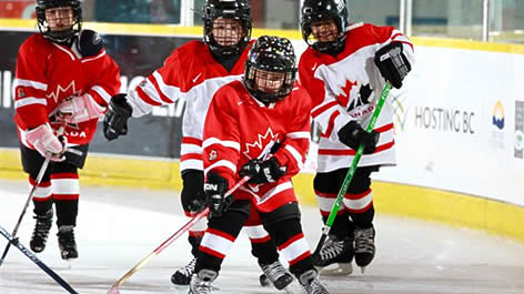 Hockey Canada Development Activities, Including Esso Fun ...